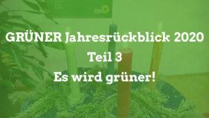 Grüner Jahresrückblick Teil 3 - Es wird grüner!